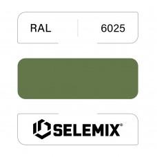 Грунт-эмаль полиуретановая SELEMIX 7-536 Глянец 70% RAL 6025 Папоротниковый зеленый 1кг